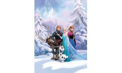 Fototapeta Frozen, Ledové království 4-498