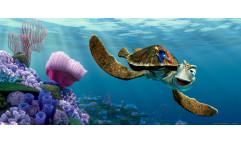 Fototapeta Hledá se Nemo FTN 5312