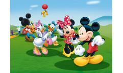 Fototapeta Mickey Mouse FT 0706, FTN 5212