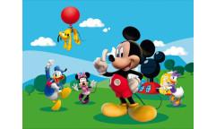 Fototapeta Mickey Mouse FT 0248, FTN 5002