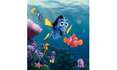 Fototapeta Hledá se Nemo FTN 5132
