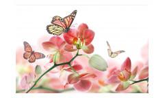 Vliesová fototapeta Motýli a orchideje 0146