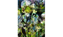 Fototapeta Aprodite´s Garden, Afroditina zahrada 4-915