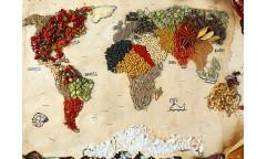 Fototapeta Mapa světa FT 1480, FTN 2484
