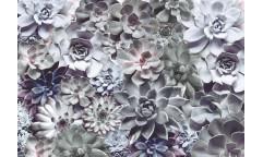Fototapeta Shades, Květiny 8-962