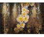 Fototapeta Serafina, Květina 8-963