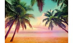 Fototapeta Miami, Pláž 8-967