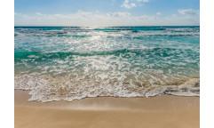 Fototapeta Seaside, Pobřeží 8-983