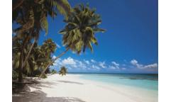 Fototapeta Maldives, Maledivy 8-240