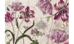 Fototapeta Merian, Květiny 8-510