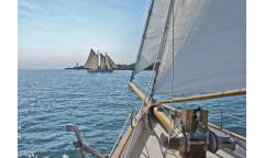 Fototapeta Sailing, Plachetnice 8-526