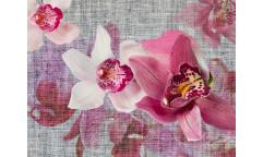 Fototapeta Orchidea FTN 1148