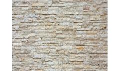 Fototapeta Kamenná zeď FTN 2412
