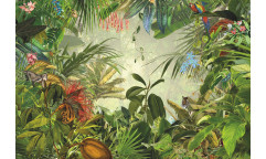 Fototapeta Into the Wild, Džungle XXL4-031