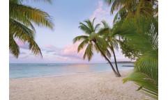 Fototapeta Paradise Morning, Moře XXL4-528