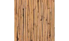 Samolepicí fólie Bamboo - Bambus 10242, 10597