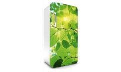 Samolepicí fototapeta na lednici Leaves, Listy