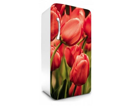 Samolepicí fototapeta na lednici Red Tulips, Červené tulipány