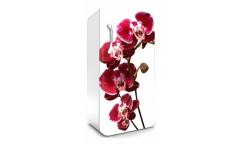 Samolepicí fototapeta na lednici Orchid, Orchidea