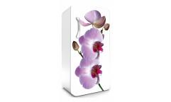 Samolepicí fototapeta na lednici Orchid, Orchidej