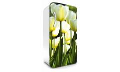 Samolepicí fototapeta na lednici White Tulips, Bílé tulipány