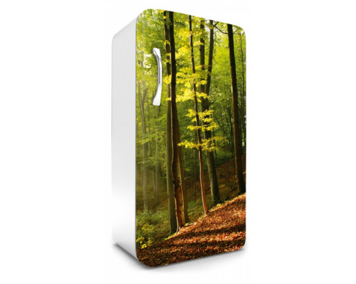 Samolepicí fototapeta na lednici Forest, Les