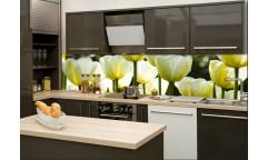 Samolepicí fototapeta k lince White Tulips, Bílé tulipány