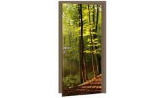 Samolepicí fototapeta na dveře Forest DL003 Les