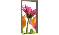 Samolepicí fototapeta na dveře Gerbera DL011