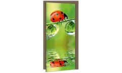 Samolepicí fototapeta na dveře Ladybird DL027 Beruška