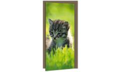 Samolepicí fototapeta na dveře Kitten DL028 Koťátko