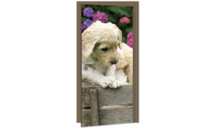 Samolepicí fototapeta na dveře Labrador DL029 Štěně