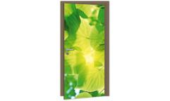 Samolepicí fototapeta na dveře Leaves DL054 Listy