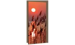 Samolepicí fototapeta na dveře Reed on the Lake DL013 Rákos na jezeře