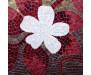 Samolepicí fototapeta na podlahu Mosaic, Mozaika