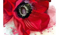 Samolepicí fototapeta na podlahu Poppy, Vlčí mák