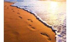 Samolepicí fototapeta na podlahu Footsteps, Stopy v písku