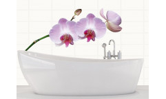 Samolepka Orchids, Orchidea ST2 017