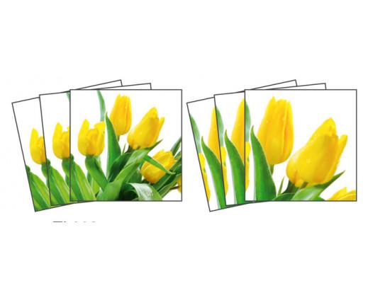Samolepky na kachličky Tulips TI 008 Tulipány