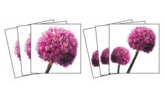 Samolepky na kachličky Allium TI 009 Česnek