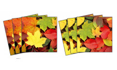 Samolepky na kachličky Leaves TI 014 Listy
