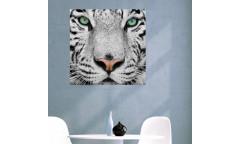 Samolepicí malířské plátno GoBig WallPanel Tiger
