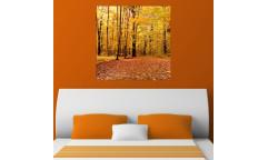 Samolepicí malířské plátno GoBig WallPanel Forest - Les