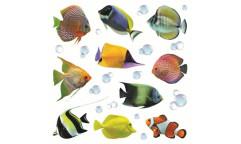 Samolepka Fishes 54253 Rybičky